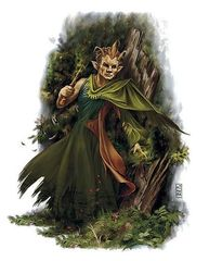 Forest%20gnome.jpg